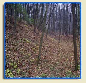 Вали давньоруського городища Камлай, село Остапківці, XIII ст.