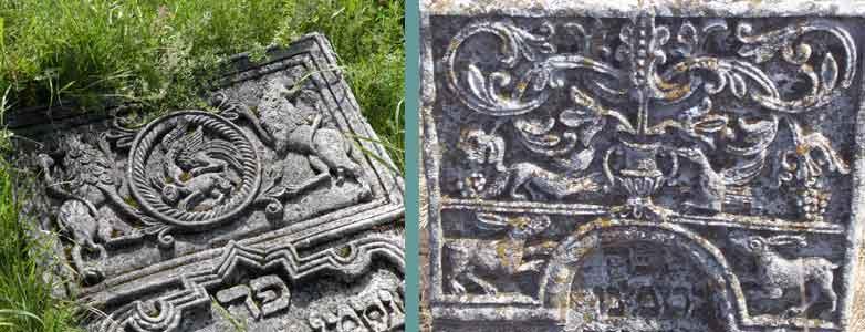 Зайці, Леви, орли, лисиця та ворон